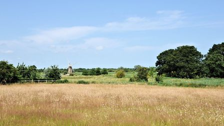 Dreamy Homes in Norfolk Villages: The stunning views over Turf Fen Mill from Broadmead House, Ludham