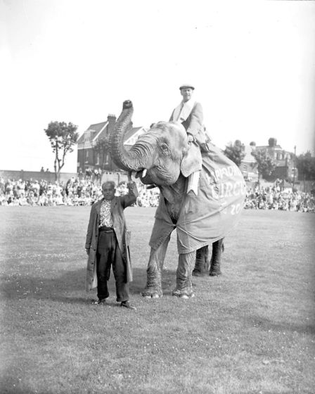 GREAT YARMOUTH HIPPODOME CIRCUS ELEPHANTS. Picture Archant Library.