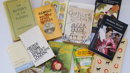 A selection of classic books. Picture: DENISE BRADLEY