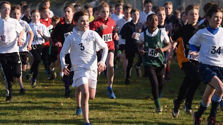The start of the Year 7 Boys race in the Norfolk Schools Cross Country Championship at the Norfolk S