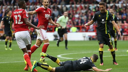 Wes Hoolahan was hauled down for a penalty when Norwich City travelled to Nottingham Forest earlier