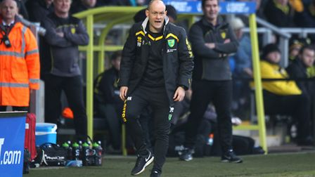 Alex Neil cut a frustrated figure for much of Norwich City's afternoon at Burton. Picture: Paul Ches