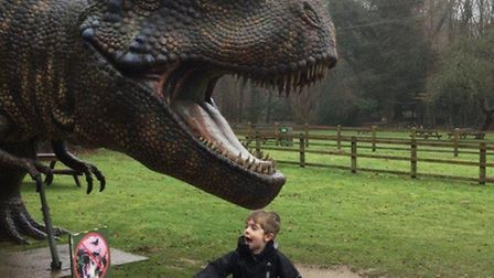 Pupils from Worstead Pre-School during at visit to Dinosaur Adventure park. Picture: WORSTEAD PRE-SC