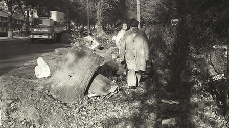 Drayton Road in Norwich following storm damage in 1987. Photo from Archant Library.