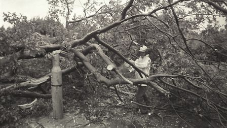 Storm damage 1987. Photo from Archant Library.