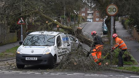 The tree is cut away from the roof of the van in Harmer Road as Storm Doris hits Norwich. Picture: D