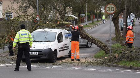 Storm Doris caused havoc across the region, with trees blowing over and many power lines damaged - l