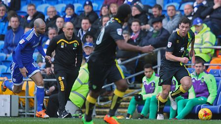 Norwich manager Alex Neil watches his new signing Yanic Wildschut push forward during the win at Car