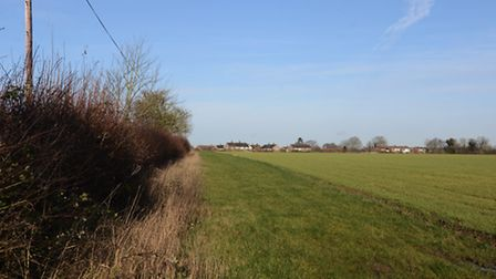 The proposed housing development site in Toftwood. Picture: Ian Burt