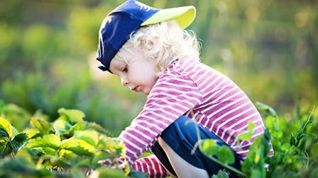 There will be lots of outdoor play, exploration and adventure at Wild Tots at Carlton Marshes. Pictu
