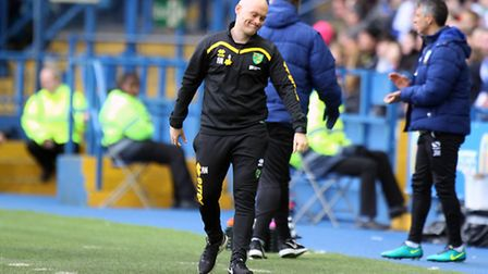 Alex Neil admitted he was embarrassed by Norwich City's capitulation at Sheffield Wednesday. Pictu