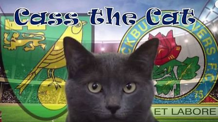 Find out who Cass the Cat has predicted as the winner for the weekend's game against Blackburn Rover