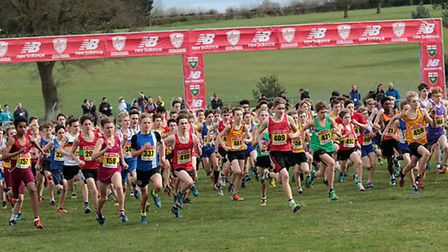 The start of the junior boys' race at the Norfolk Showground. Picture: Tony Payne