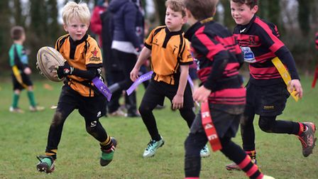 North Walsham Rugby Club hosted a mini rugby festival for junior teams from around the county. Swaf
