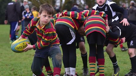 North Walsham Rugby Club host a mini rugby festival for junior teams from around the county.Norwich