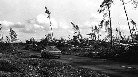 Rendlesham Forest after the Great Storm of October 1987 (Archive picture)