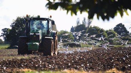 Large farm vehicles could be banned from using Burgh as a through route. Picture: DENISE BRADLEY