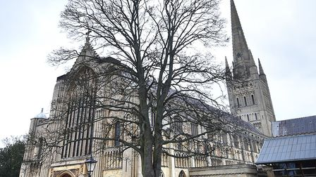 Norwich Cathedral.Picture: ANTONY KELLY