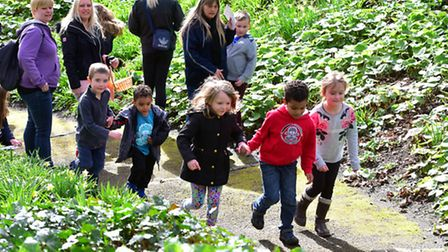 Scenes from Lowestoft Lions Easter Egg Hunt at Sparrows Nest last year. PHOTO: Nick Butcher
