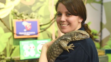 Inside the new enclosure Rainforest Rangers at The Sea Life Centre in Hunstanton is Hollie Stephenso
