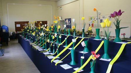 The Gorleston Horticultural Society is being held this Sunday. Photo: Gorleston Horticultural Societ