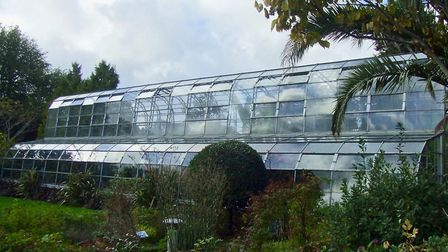 The greenhouse at Torre Abbey