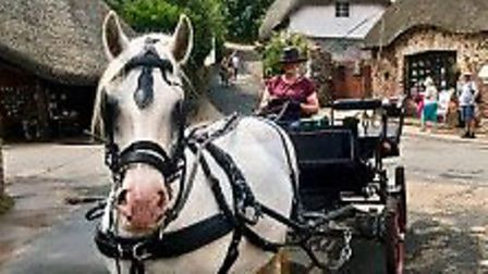 The horse and carriage ride at Cockington
