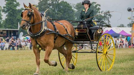 A carriage rider at a previous Euston Rural Pastimes event. Picture: Brian Soper
