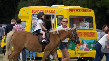 Pony rides at Thetford's Massive Fun Day at the Kilverstone Estate, last year. Picture: Sharon Thomp