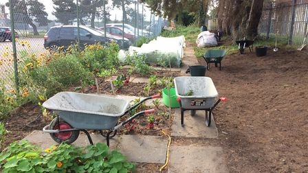 The Horticulture Industry Scheme which helps ex-offenders by giving them skills through gardening. P