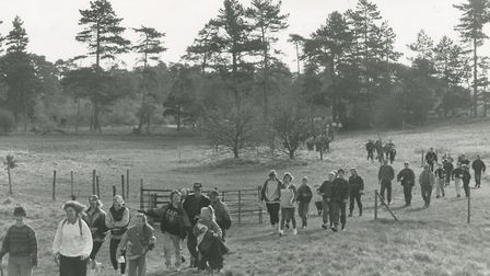 Walkers wend their way through breckland on saturday during the annual 24 mile Thetford Chase Walk,