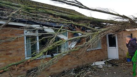 The damage caused by a tree falling on a bungalow in Brandon. Barbra Best was laying in bed when the