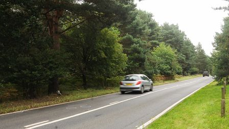 The B1107 close to the entrance of Thetford Golf Club, where motorcyclist Ryan Tozer died in August