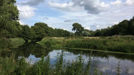 The Little Ouse at Santon Downham. Picture: Rebecca Murphy