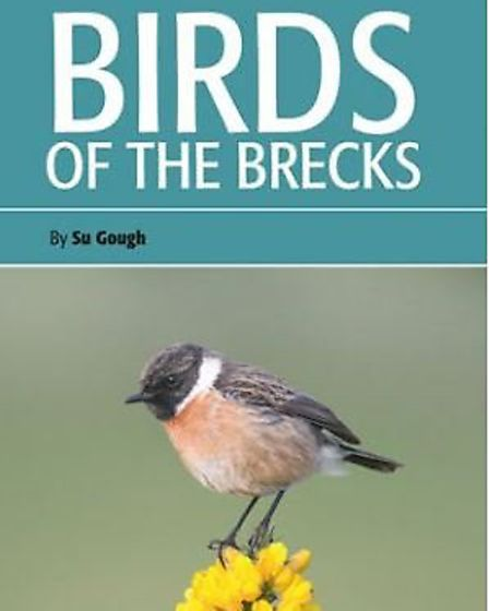 Birds of the Brecks - one of the new wildlife guides to spark interest in the Brecks. Picture: Briti