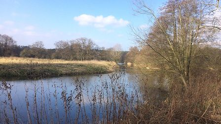The Little Ouse river path at Santon Downham. Part of the Brecks. Picture: Rebecca Murphy