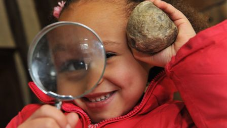 A child with a fossil at Ancient House Museum. Picture: Ancient House Museum of Thetford Life