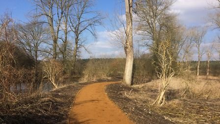 The resurfaced part of the Little Ouse Path at Santon Downham. Picture: Rebecca Murphy