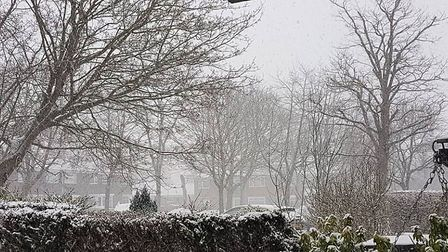 Domingos Silva took this wintery picture in Thetford today. Picture: Domingos Silva