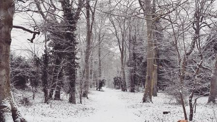 Walking in a wintery wonderland in Thetford. Picture: Hayley Neal