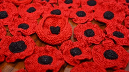 Some of the knitted poppies that the Thetford Town Council are going to place trailing from the Guil