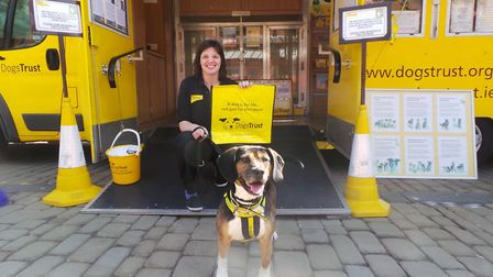 Dogs Trust's Laura Nicholas aboard the Dogmobile. Picture: Dogs Trust