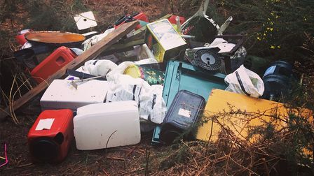 Rubbish have been dumped over the past couple of weeks in Thetford Forest between Weeting and Feltwe