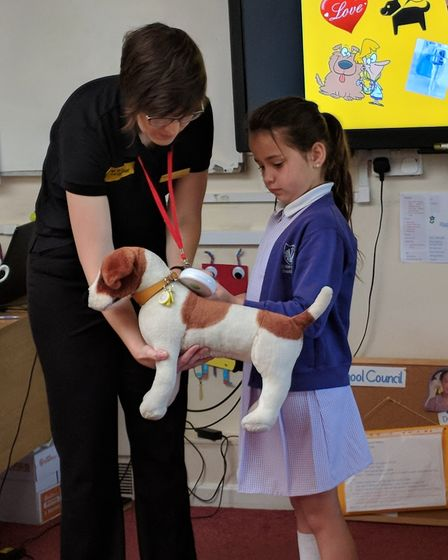 Dogs Trust visits schools to ensure pupils understand how to behave around dogs. Pictured is a pupil