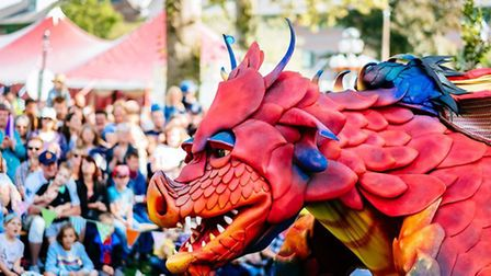 The Dragon Fest ar West Stow. Picture: Neil Holmes