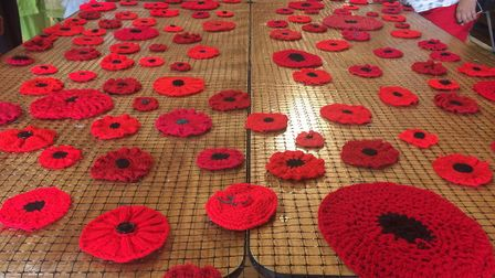 Some of the more than 3,000 poppies which have already been knitted for the Thetford Poppy Project.