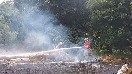 Firefighters tackling a blaze in Thetford Forest close to Thetford Golf Club. Picture: Norfolk Fire