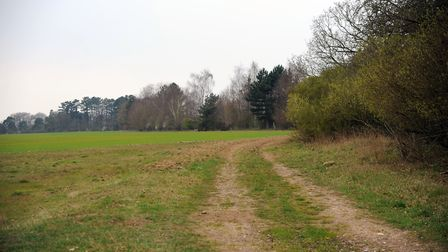 Areas in Thetford where 5,000 homes are to be built. Picture: Sonya Duncan