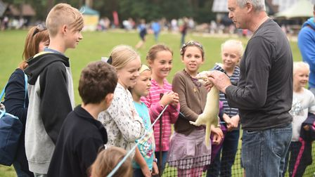 The High Lodge heritage open day last year. Pictured, A Business of Ferrets. Picture: Ian Burt