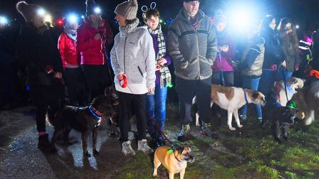 Dogs and their humans taking part in the Bark in the Dark in Thetford Forest. Picture: DENISE BRADLE